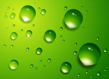 Water drops  background. Stock Photos