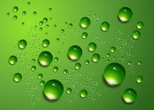 Water drops  background. Stock Image