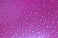 Water drops background. Pink water drops background Royalty Free Stock Image