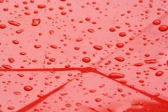 Water drops background or rain Royalty Free Stock Photography