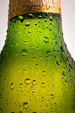 Water drops on a beer bottle. Water drops on a green beer bottle Royalty Free Stock Images