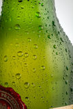 Water drops on a beer bottle. Water drops on a green beer bottle Stock Photography