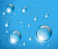 Water drops blue  background. Stock Image