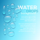 Water drops on blue background. Vector illustration Royalty Free Stock Photos