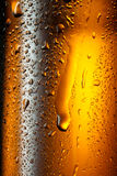 Water drops on brown bottle of beer. Royalty Free Stock Photo