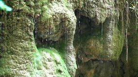 Water drops drip from the waterfall stock video footage