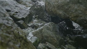 Water Drops Dripping from Coastal Rocks stock footage