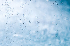 Water drops. Stock Photography