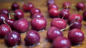 Water Drops Falls on Sweet Cherries. Water drops falls on sweet ripe juicy dark red cherries stock video footage