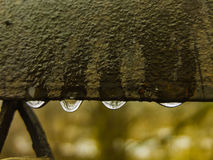 Water drops at the gate.Nostalgic view royalty free stock image