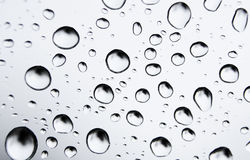 Water Drops on Glass Royalty Free Stock Photos