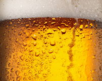 Water drops on glass of beer. Stock Images