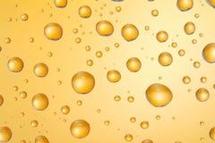 Water drops. Royalty Free Stock Image