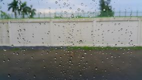 Water drops on the glass royalty free stock photography