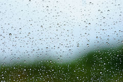 Water drops on glass. Stock Photography