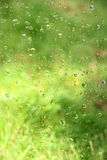 Water drops. On glass window Royalty Free Stock Photo