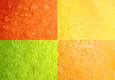 Water drops on grapefruit rind. Macro background. Four colours Stock Images