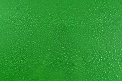 Water drops on green Stock Photography