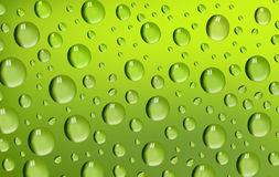 Water Drops on green background. Stock Photos