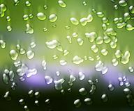 Water Drops Green Background Stock Photography