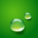 Water drops on green Royalty Free Stock Image