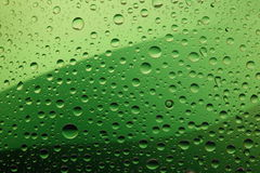 Water drops. Green background gradient Stock Photography