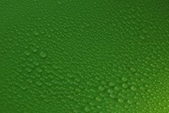 Water drops on green background texture. Ecology for design Stock Image