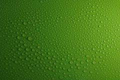 Water drops on green background texture. Ecology for design Royalty Free Stock Image