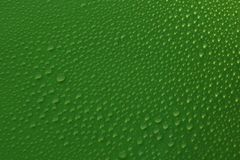 Water drops on green background texture. Ecology for design Stock Photos