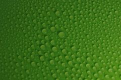 Water drops on green background texture. Ecology for design Stock Photography