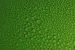 Water drops on green background texture. Ecology for design Royalty Free Stock Photography