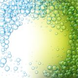 Water drops on green background. Vector water drops on green background Stock Photography