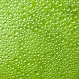 Water drops on green glass. In the background Stock Photo