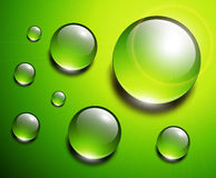 Water drops green Stock Images