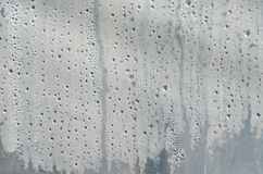 Water drops on greenhouse film surface Stock Images
