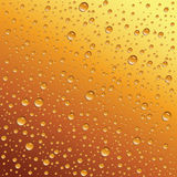 Water Drops On Beer Royalty Free Stock Photo