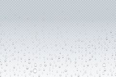Free Water Drops On Glass. Rain Droplets On Transparent Window, Steam Condensation Pattern, Shower Glass. Vector Water Drops Royalty Free Stock Photography - 145457827