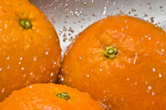 Water Drops - Oranges Royalty Free Stock Images