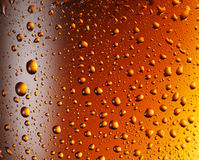 Water drops over beer glass. Royalty Free Stock Photos