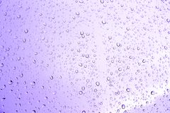 Water drops of pink on glass. Water drops of pink on glass Royalty Free Stock Image