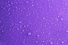 Water drops on purple background, close up Royalty Free Stock Photography