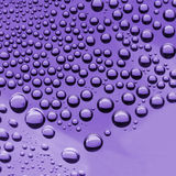 Water Drops( Purple color) Royalty Free Stock Photos