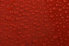 Water drops on red background texture royalty free stock photo