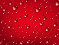 Water drops on red background Royalty Free Stock Images