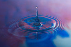 Water Drops and Ripples. Macro photo of water drops falling into a pool of water, causing a splash and ripples Stock Image