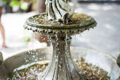 Water Drops splashes. Stock Image