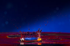 Water. Drops. Spray. Wavelets. Royalty Free Stock Photo