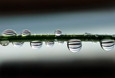 Water drops with strips Stock Photography