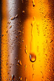Water drops texture on the bottle of beer. Abstract background Royalty Free Stock Photography