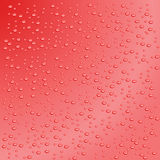 Water drops.Vector illustration Royalty Free Stock Image